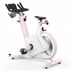 Spin Bike S-100F VIKING